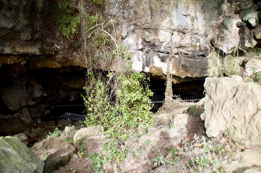 Acceso a la cueva de El Pendo
