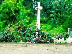 cementerio-cantabria-inusual