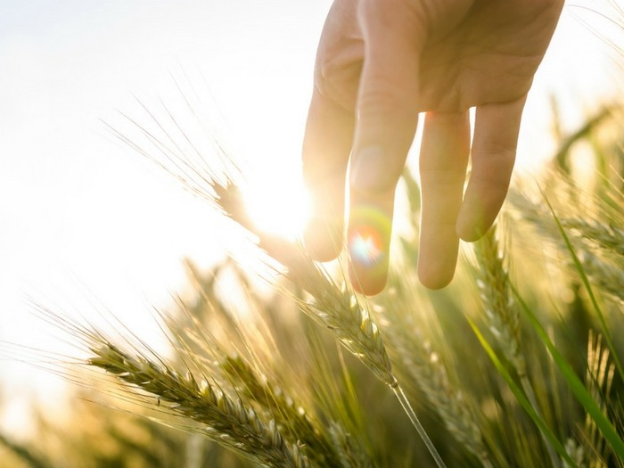 Hombre y mujer: Una relación auténtica con la naturaleza