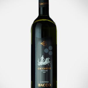 nettuno cacchione wine cantina bacco
