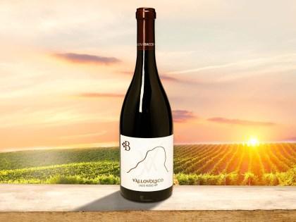 La novità di Cantina Bacco: ecco il Vallovolsco, un vino rosso con un aroma fruttato e speziato
