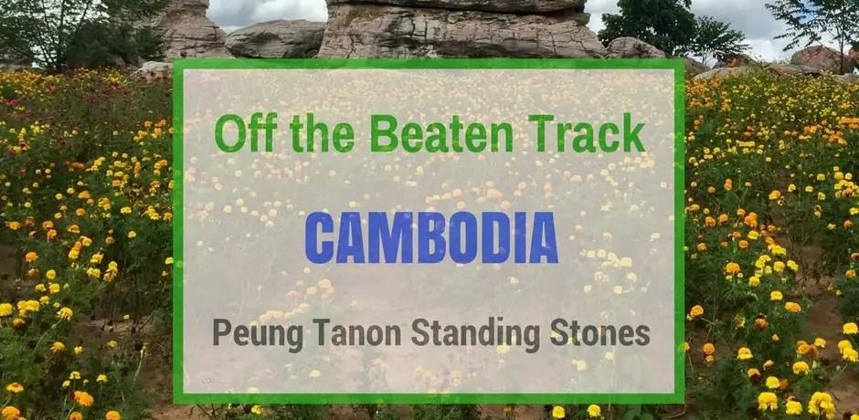 Peung Tanon Standing Stones | Cambodia