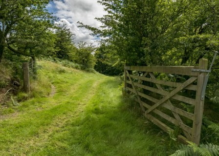 An image of a farm gate open
