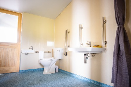 Image showing adapted bathroom with toilet, hand rinse basin, roll under sink and grab rails
