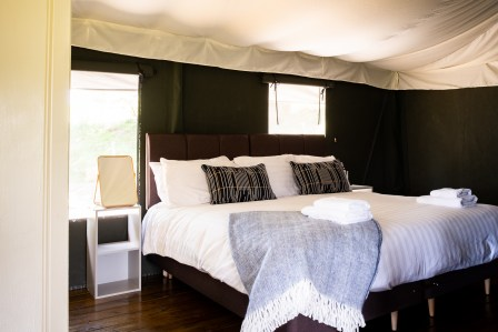 Image showing super king bed with white linen and blue throw