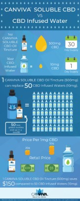 CANVIVA Soluble Infographic
