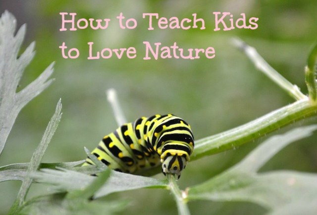 Teaching children to love and connect with nature