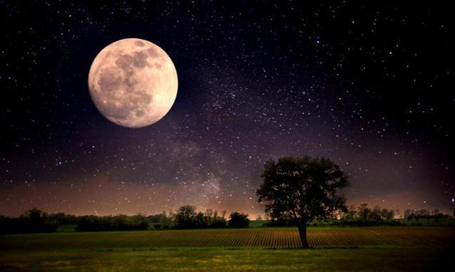 Sogno di una notte di luna piena