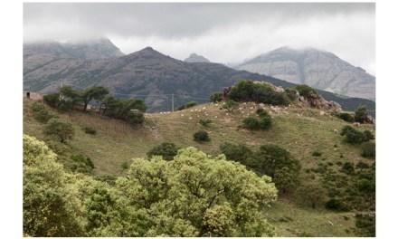 Viaggiare è conoscere: la Sardegna produttiva