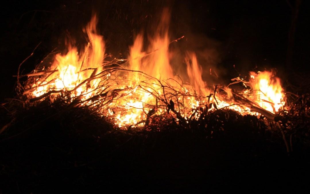 The Bonfire Plot – Part 4