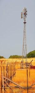 Windmill, Spring Creek Road, 2003