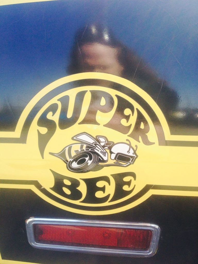 Super Bee Photograph by Whitey Kirst