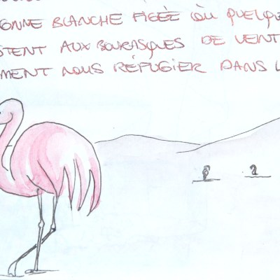 Dessin_Flammand_Rose