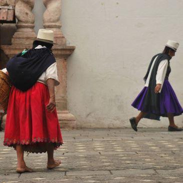 J 270 à J 273 : Cuenca, dernière étape Equatorienne : Retour à nos premiers amours, La Sierra