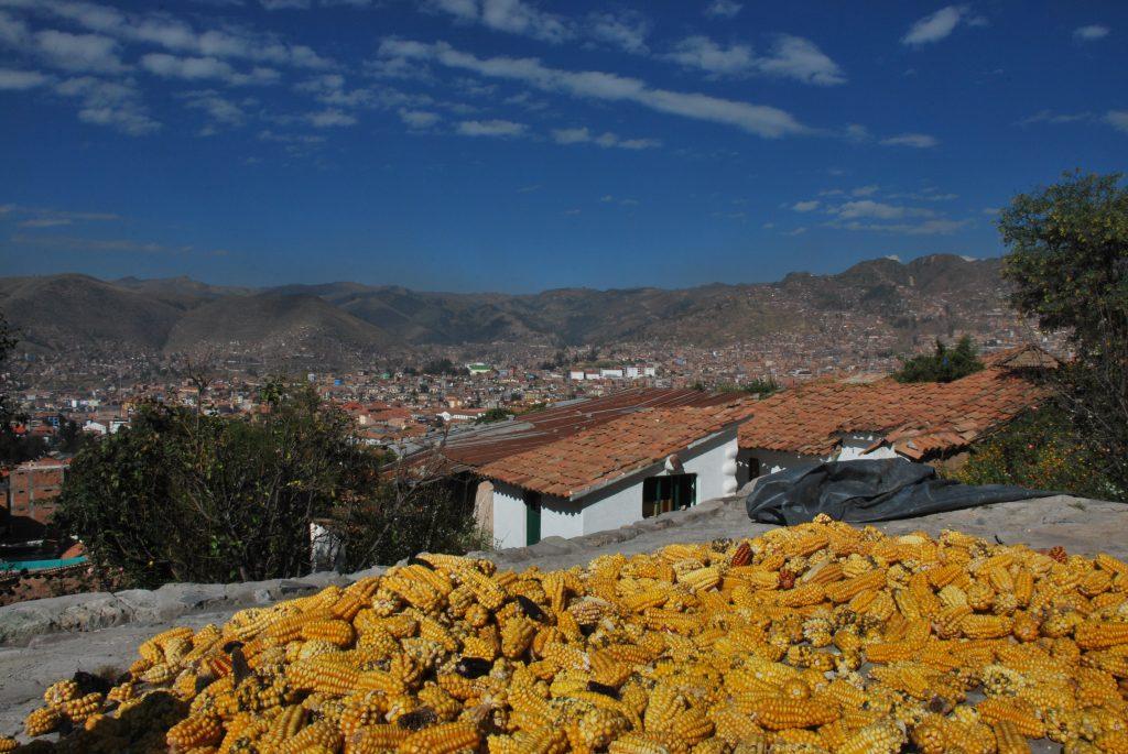 Cuzco_Mais_Sechage