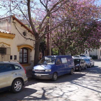 Argentine_Salta