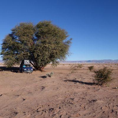 Chili_Desert Atacama