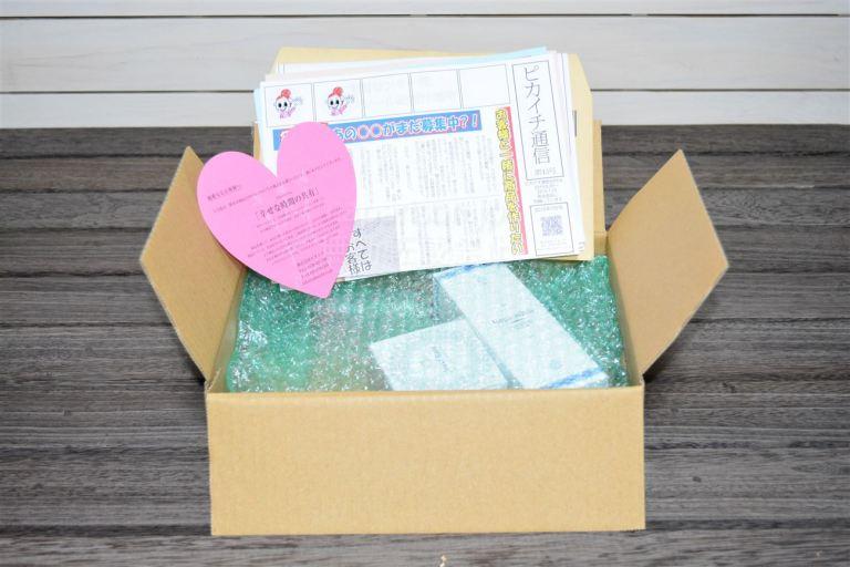 リプロスキン・ジュエルレインの梱包開封と付属品