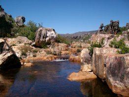 Ratel River at Africa, Beaverlac