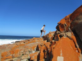 Trail running on Robberg Peninsula, Plettenberg Bay