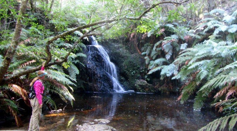 Waterfall on the Perdekop Trail