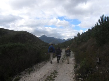 Approaching Windmeulnek, Outeniqua Trail