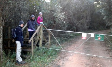 Style near the start of the Outeniqua Trail