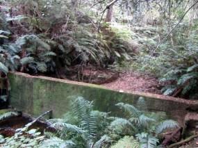 Water reservoir, Terblans Nature Walk