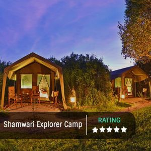 Shamwari Explorer Camp Featured Image 500x500