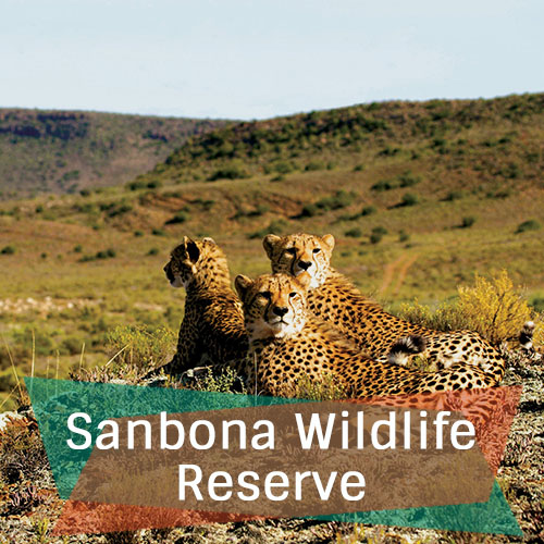 Sanbona Wildlife Reserve Featured Image New