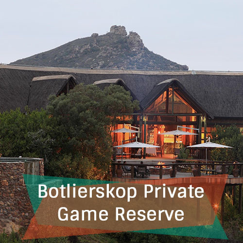 Botlierskop Private Game Reserve Feature Image