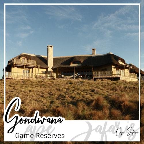 Gondwana Game Reserve Fetured Image 2019