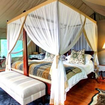 Botlierskop Tented Lodge Accommodation