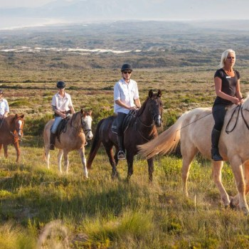 Grootbos Villa Horse Group