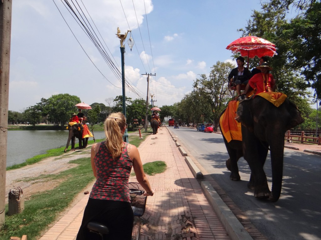 Ayutthaya elephant tour // Thailand
