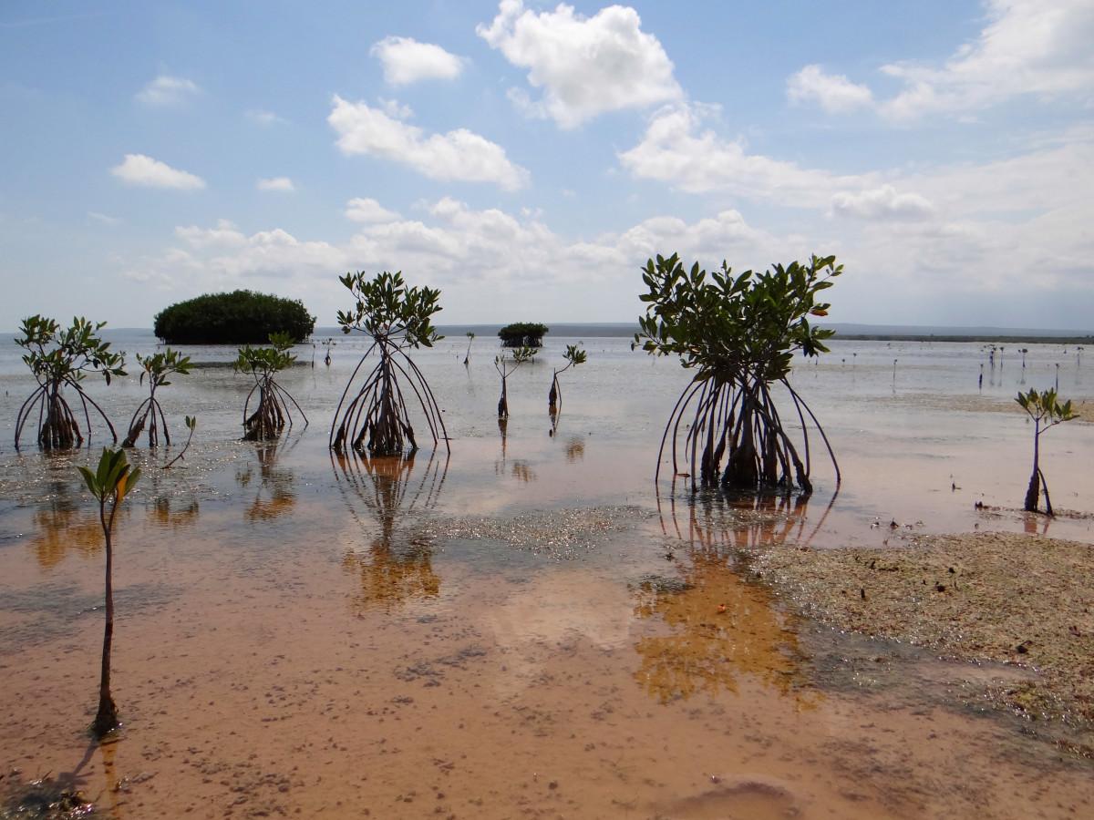 Jaragua National Park // Dominican Republic