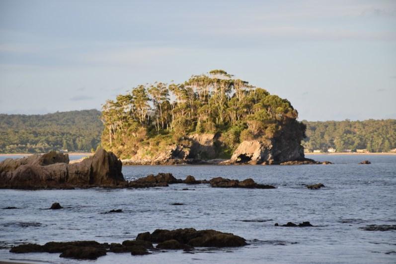 Island New South Wales Australia