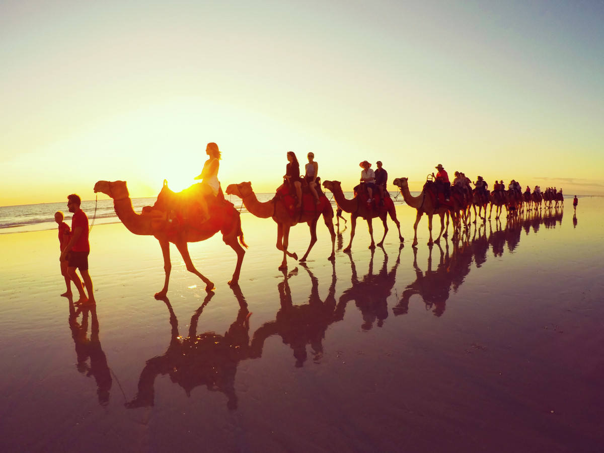 Australia Broome Cable Beach Camels