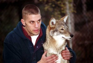 Dr. Jonathan G. Way of Osterville, seen here with one of his study subjects - the eastern coyote. Photo courtesy Adirondack Wildlife