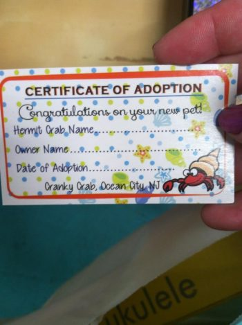 Certificate of Adoption from the boardwalk in Ocean City.