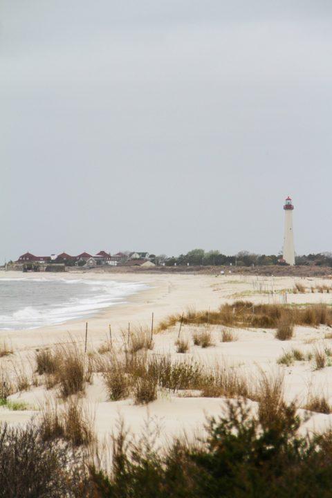 Looking over the dunes