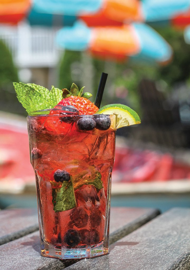 Cocktail: Beach Plum Farm  Berry Mojito