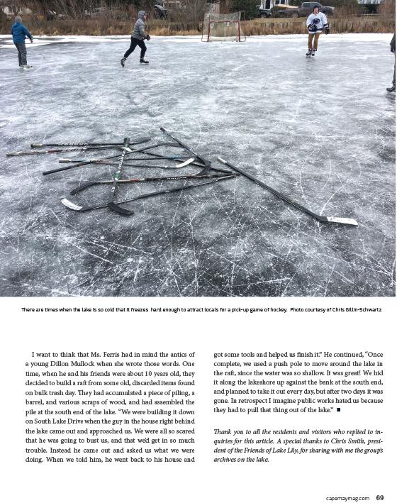 Frozen Lake Lily