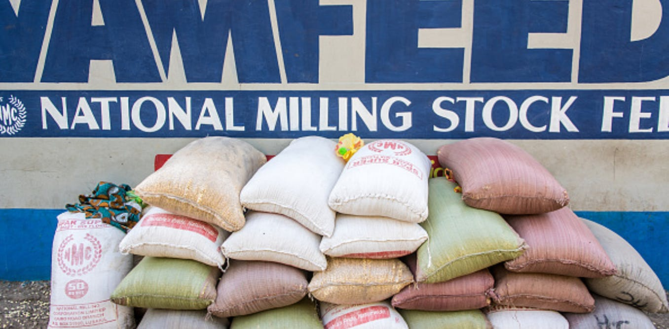insights from the effect of a bridge across the Zambezi on maize prices