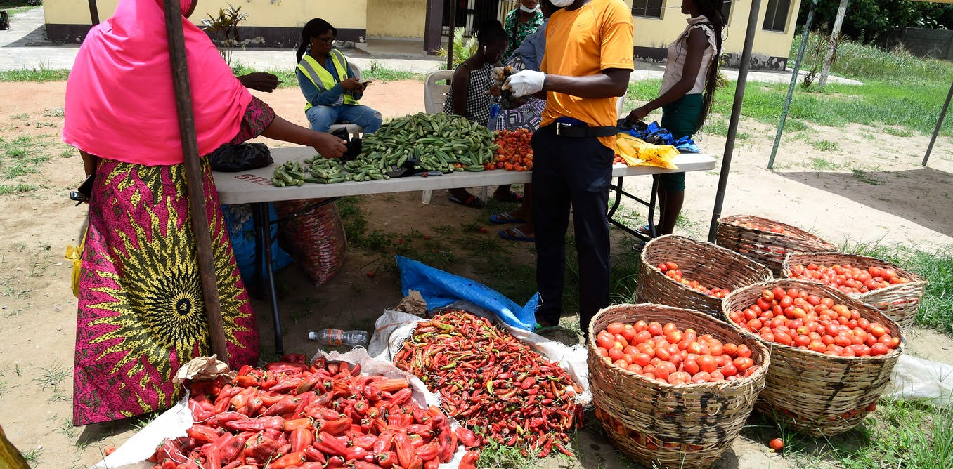 Pandemic underscores flaws in Nigeria's farming and food supply chains