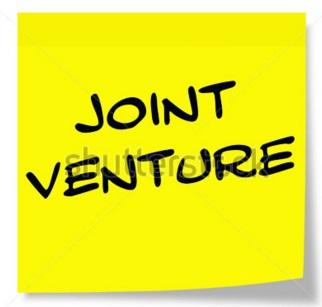 International Business Joint Venture