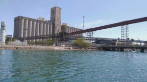 Profepa clausuró terminal marítima de Grupo México