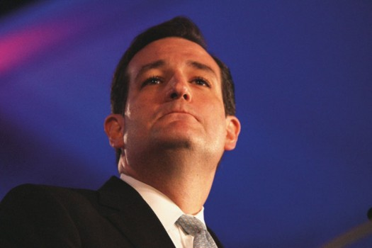 Texas GOP Senate nominee Ted Cruz: The new face of the Tea Party?