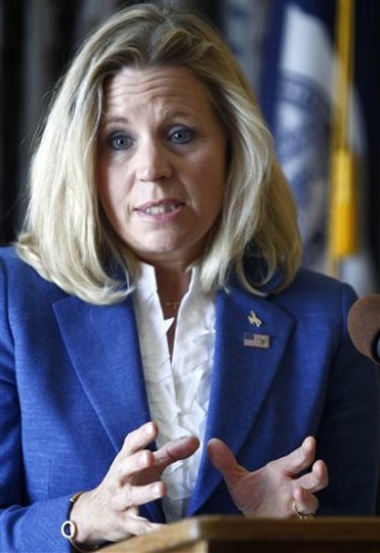 Liz Cheney. (AP Photo/Matt Young)