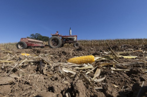 Tom Duerst plants winter wheat at his farm near Verona, Wis. (AP Photo/Andy Manis)